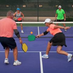 Avec 2017, une nouvelle activité « loisir » au Tennis Club de Prissé : LE PICKLEBALL.